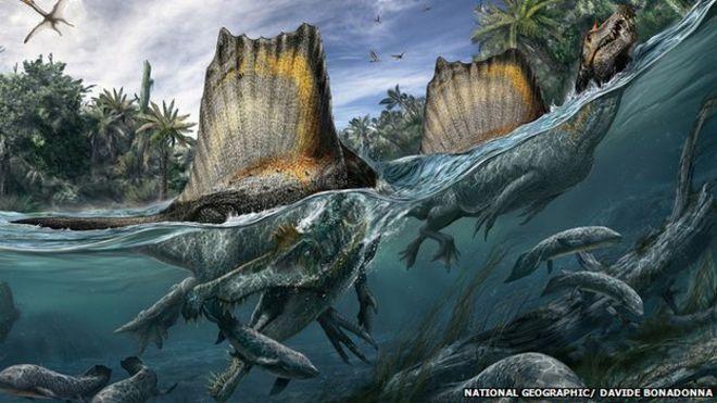spinosaurus_ngm_102014_superjaws_108to110